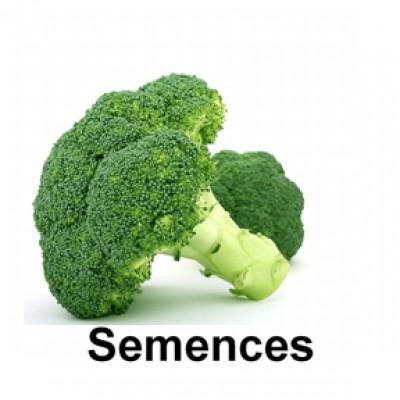 Semences Brocoli munchkin