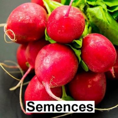 Semences Radis cherry belle